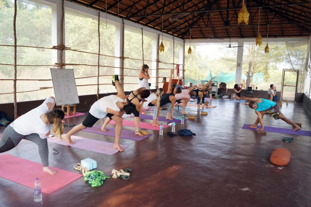 300-Hour Yoga Teacher Training In Dharamsala